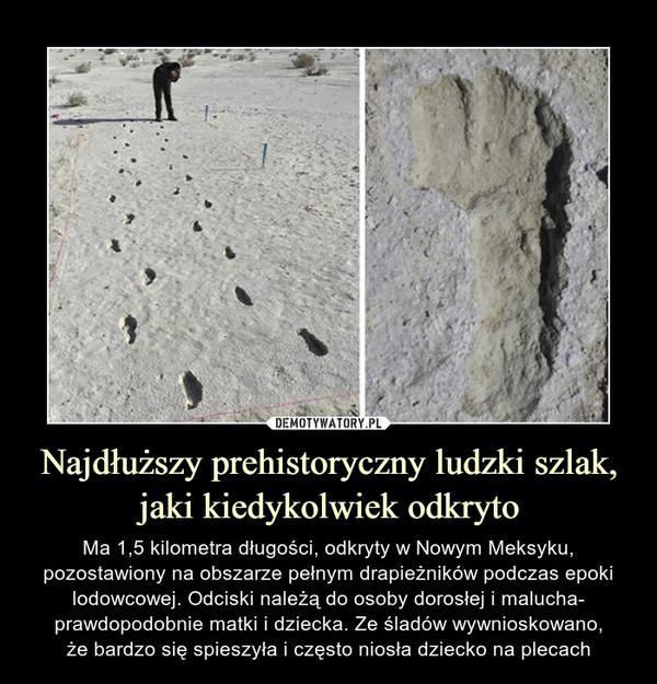 Najdłuższy prehistoryczny ludzki szlak, jaki kiedykolwiek odkryto
