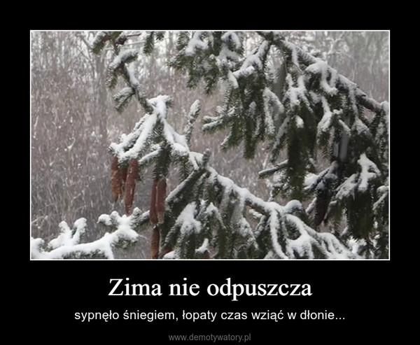 Zima nie odpuszcza – sypnęło śniegiem, łopaty czas wziąć w dłonie...