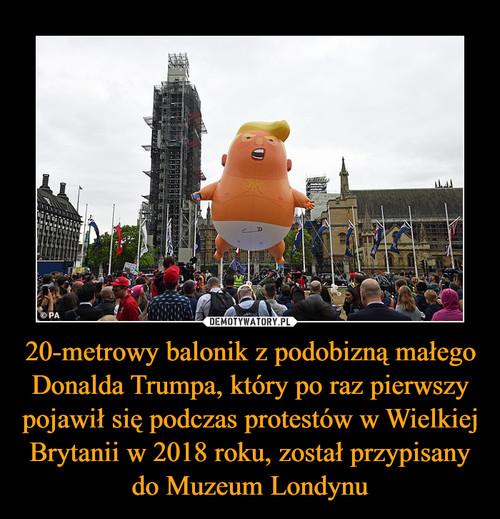 20-metrowy balonik z podobizną małego Donalda Trumpa, który po raz pierwszy pojawił się podczas protestów w Wielkiej Brytanii w 2018 roku, został przypisany do Muzeum Londynu