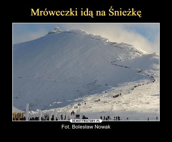 – Fot. Bolesław Nowak