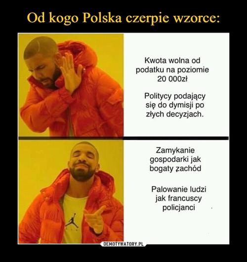 Od kogo Polska czerpie wzorce: