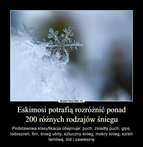 Eskimosi potrafią rozróżnić ponad200 różnych rodzajów śniegu – Podstawowa klasyfikacja obejmuje: puch, zsiadły puch, gips, lodoszreń, firn, śnieg ubity, sztuczny śnieg, mokry śnieg, szreń łamliwą, lód i zawiesinę