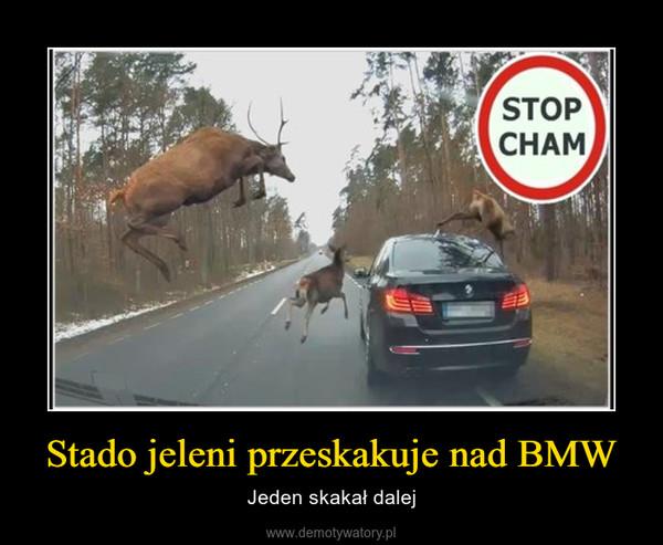 Stado jeleni przeskakuje nad BMW – Jeden skakał dalej