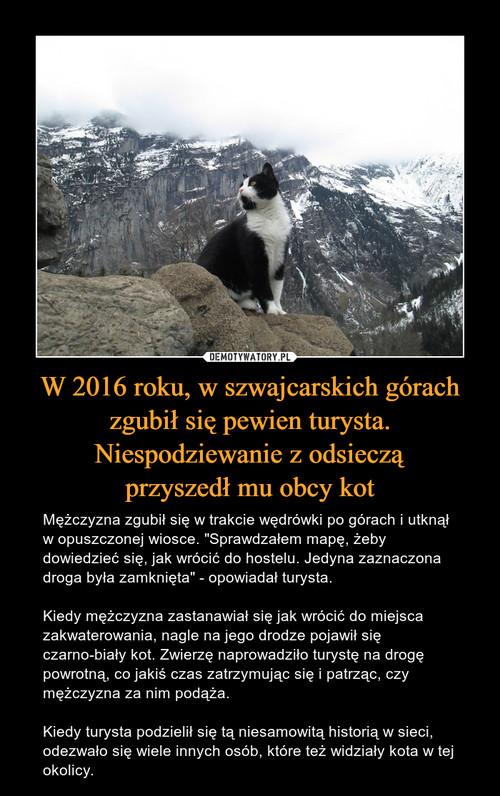 W 2016 roku, w szwajcarskich górach zgubił się pewien turysta. Niespodziewanie z odsieczą przyszedł mu obcy kot