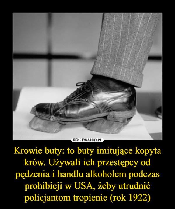 Krowie buty: to buty imitujące kopyta krów. Używali ich przestępcy od pędzenia i handlu alkoholem podczas prohibicji w USA, żeby utrudnić policjantom tropienie (rok 1922) –