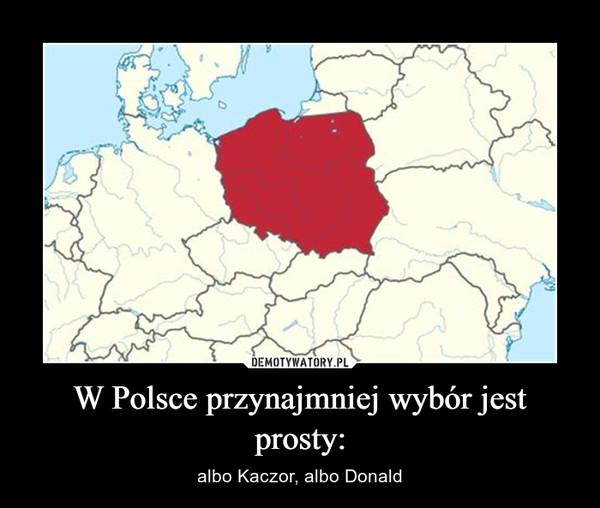 W Polsce przynajmniej wybór jest prosty: – albo Kaczor, albo Donald