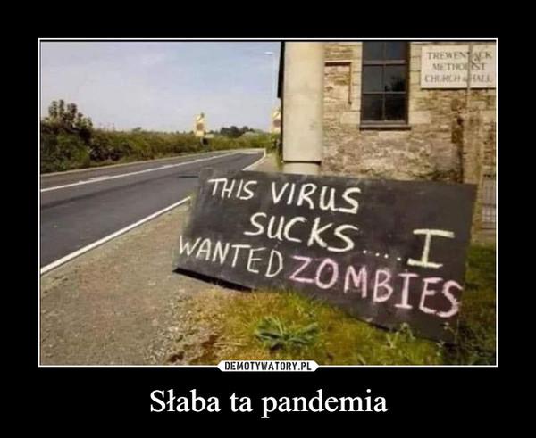 Słaba ta pandemia –