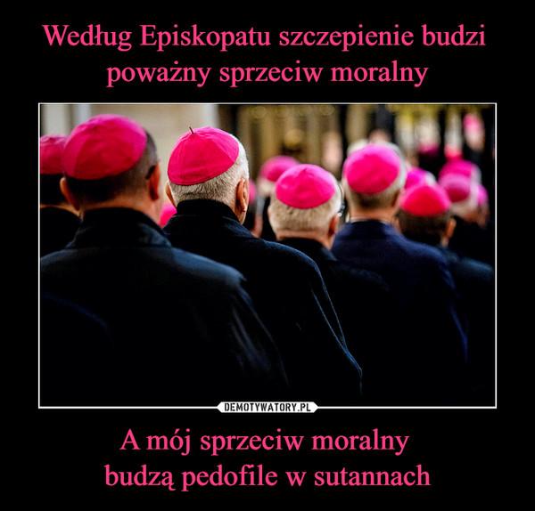 A mój sprzeciw moralny budzą pedofile w sutannach –