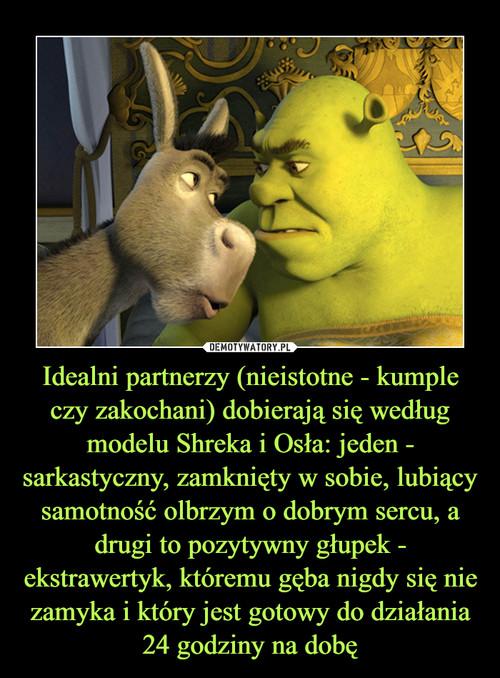 Idealni partnerzy (nieistotne - kumple czy zakochani) dobierają się według modelu Shreka i Osła: jeden - sarkastyczny, zamknięty w sobie, lubiący samotność olbrzym o dobrym sercu, a drugi to pozytywny głupek - ekstrawertyk, któremu gęba nigdy się nie zamyka i który jest gotowy do działania 24 godziny na dobę