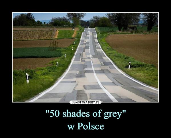 """""""50 shades of grey""""w Polsce –"""