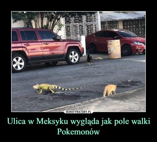 Ulica w Meksyku wygląda jak pole walki Pokemonów