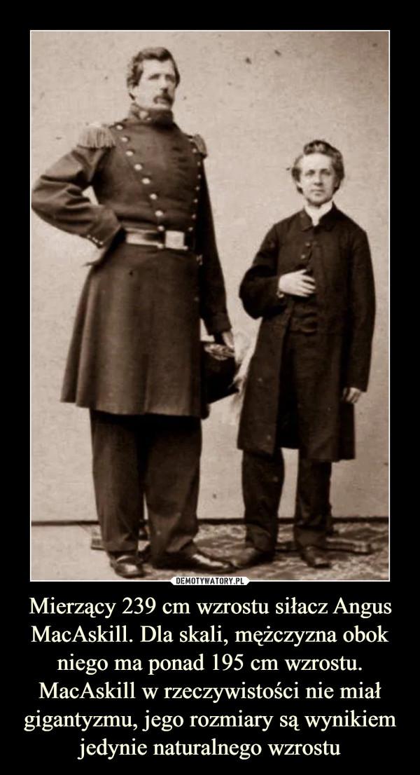 Mierzący 239 cm wzrostu siłacz Angus MacAskill. Dla skali, mężczyzna obok niego ma ponad 195 cm wzrostu. MacAskill w rzeczywistości nie miał gigantyzmu, jego rozmiary są wynikiem jedynie naturalnego wzrostu –