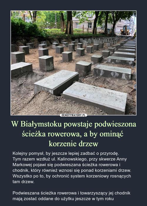 W Białymstoku powstaje podwieszona ścieżka rowerowa, a by ominąć  korzenie drzew