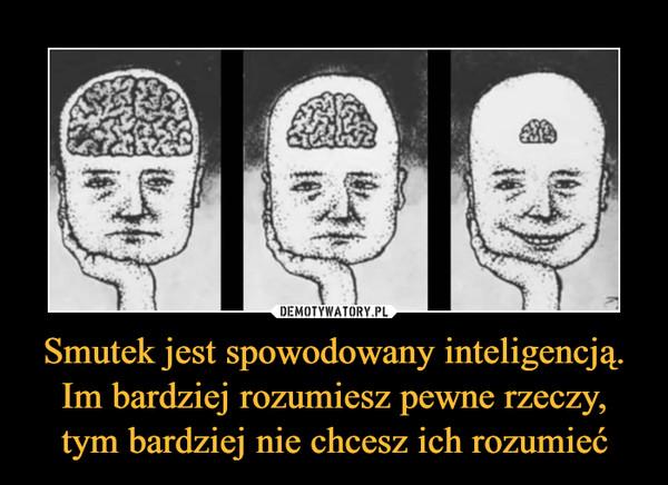 Smutek jest spowodowany inteligencją. Im bardziej rozumiesz pewne rzeczy, tym bardziej nie chcesz ich rozumieć –