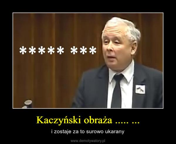 Kaczyński obraża ..... ... – i zostaje za to surowo ukarany