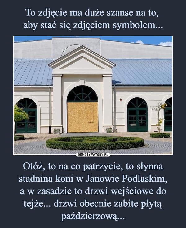 Otóż, to na co patrzycie, to słynna stadnina koni w Janowie Podlaskim,a w zasadzie to drzwi wejściowe do tejże... drzwi obecnie zabite płytą paździerzową... –
