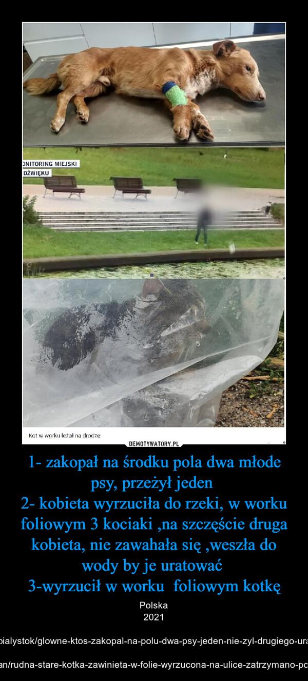 1- zakopał na środku pola dwa młode psy, przeżył jeden 2- kobieta wyrzuciła do rzeki, w worku foliowym 3 kociaki ,na szczęście druga kobieta, nie zawahała się ,weszła do wody by je uratować 3-wyrzucił w worku  foliowym kotkę – Polska 2021https://tvn24.pl/bialystok/glowne-ktos-zakopal-na-polu-dwa-psy-jeden-nie-zyl-drugiego-uratowali-5153455https://tvn24.pl/poznan/rudna-stare-kotka-zawinieta-w-folie-wyrzucona-na-ulice-zatrzymano-podejrzanego-5158525