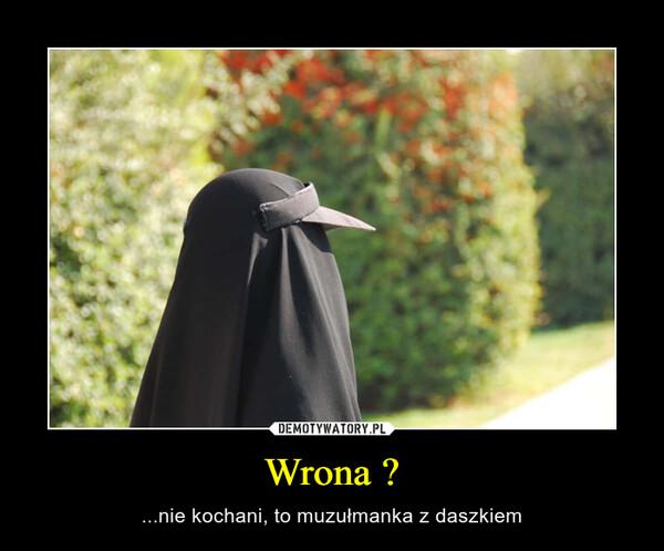 Wrona ? – ...nie kochani, to muzułmanka z daszkiem