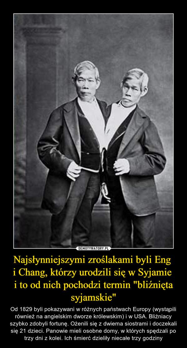 """Najsłynniejszymi zroślakami byli Eng i Chang, którzy urodzili się w Syjamie i to od nich pochodzi termin """"bliźnięta syjamskie"""" – Od 1829 byli pokazywani w różnych państwach Europy (wystąpili również na angielskim dworze królewskim) i w USA. Bliźniacy szybko zdobyli fortunę. Ożenili się z dwiema siostrami i doczekali się 21 dzieci. Panowie mieli osobne domy, w których spędzali po trzy dni z kolei. Ich śmierć dzieliły niecałe trzy godziny"""