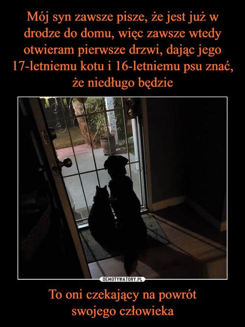 Mój syn zawsze pisze, że jest już w drodze do domu, więc zawsze wtedy otwieram pierwsze drzwi, dając jego 17-letniemu kotu i 16-letniemu psu znać, że niedługo będzie To oni czekający na powrót swojego człowieka