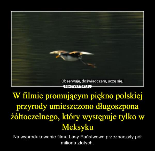 W filmie promującym piękno polskiej przyrody umieszczono długoszpona żółtoczelnego, który występuje tylko w Meksyku – Na wyprodukowanie filmu Lasy Państwowe przeznaczyły pół miliona złotych.