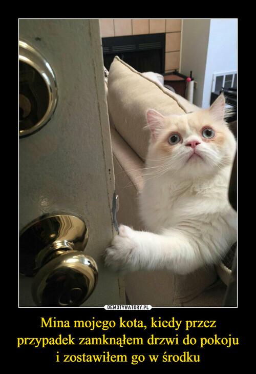 Mina mojego kota, kiedy przez przypadek zamknąłem drzwi do pokoju i zostawiłem go w środku