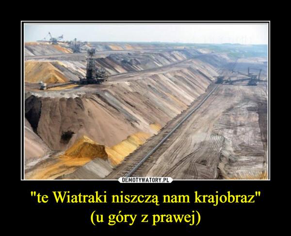 """""""te Wiatraki niszczą nam krajobraz""""(u góry z prawej) –"""