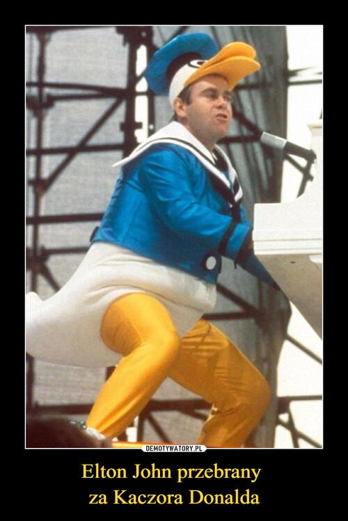 Elton John przebrany  za Kaczora Donalda