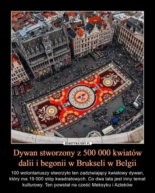Dywan stworzony z 500 000 kwiatów dalii i begonii w Brukseli w Belgii