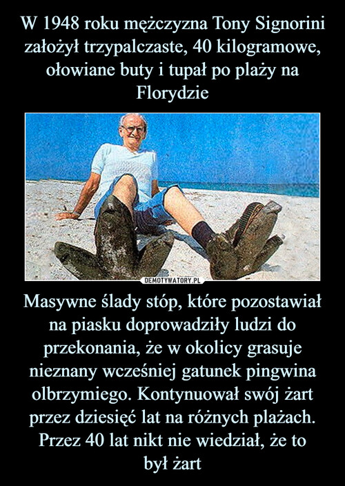 W 1948 roku mężczyzna Tony Signorini założył trzypalczaste, 40 kilogramowe, ołowiane buty i tupał po plaży na Florydzie Masywne ślady stóp, które pozostawiał na piasku doprowadziły ludzi do przekonania, że w okolicy grasuje nieznany wcześniej gatunek pingwina olbrzymiego. Kontynuował swój żart przez dziesięć lat na różnych plażach. Przez 40 lat nikt nie wiedział, że to był żart