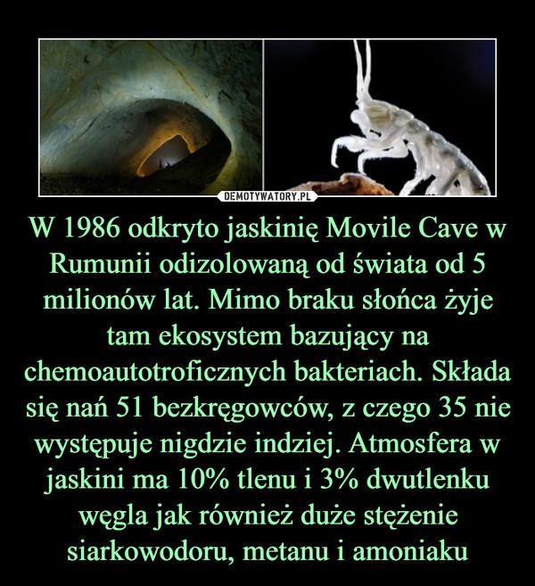 W 1986 odkryto jaskinię Movile Cave w Rumunii odizolowaną od świata od 5 milionów lat. Mimo braku słońca żyje tam ekosystem bazujący na chemoautotroficznych bakteriach. Składa się nań 51 bezkręgowców, z czego 35 nie występuje nigdzie indziej. Atmosfera w jaskini ma 10% tlenu i 3% dwutlenku węgla jak również duże stężenie siarkowodoru, metanu i amoniaku